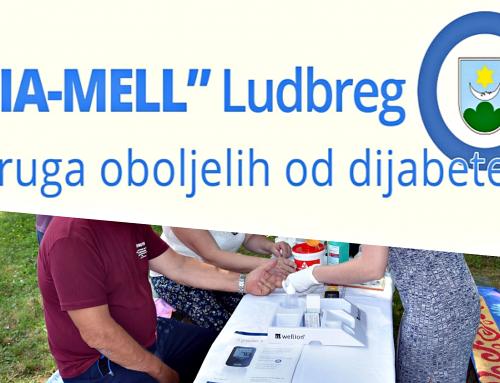 DIA-MELL: Udruga dijabetičara u uvjetima pandemije koronavirusa