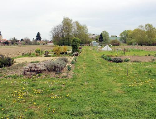 Na Varoškim vrtovima dostupne dvije vrtne parcele
