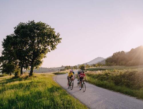 Ove nedjelje 103 kilometra CRAZZY HILL° Biciklijade