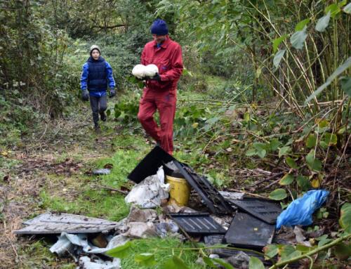 Akcija čišćenja okoliša u Sigecu Ludbreškom